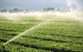 Öntözze hatékonyan és gazdaságosan növényeit!Öntözze hatékonyan és gazdaságosan növényeit!