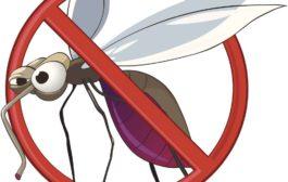 Hatékony segítség rovarok és kártevők ellen
