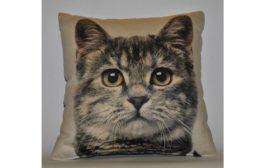 Ajándékok macskaimádóknak