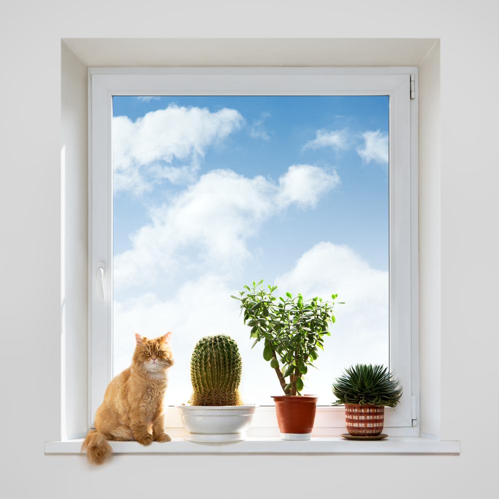 Akciós, egyedi ablakok és ajtók