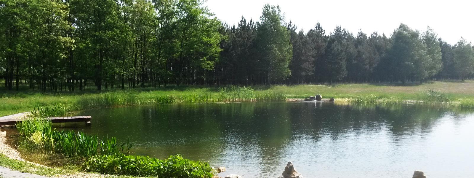 Tegye különlegessé kertjét tóval!