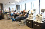 Miért fontos a vérplazma megléte?